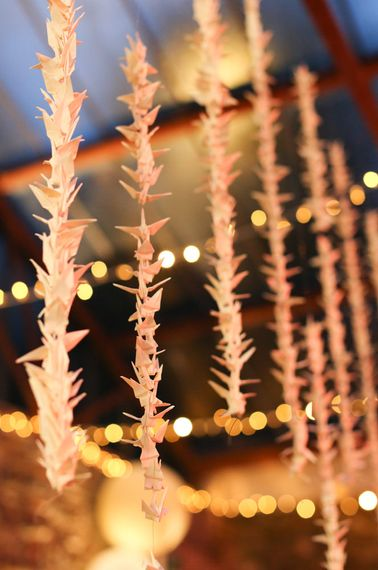 "Image by <a href=""https://www.haywoodjonesphotography.co.uk/"" target=""_blank"">Haywood Jones Photography</a>"