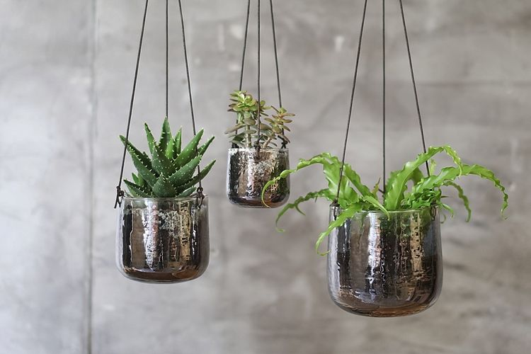 Hanging Planters at The Wedding Shop