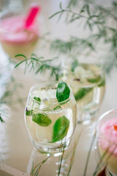 Botanical Cocktails