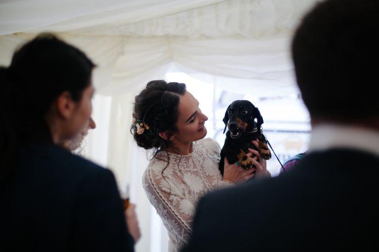 Sausage Dog At Wedding