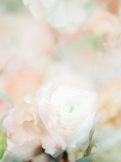 Georgina Harrison Film Photography
