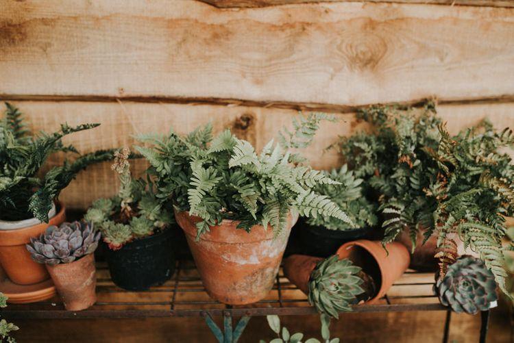 Greenery Plant Pot Wedding Decor   Outdoor Woodland Wedding at The Dreys in Kent   Fern Edwards Photography