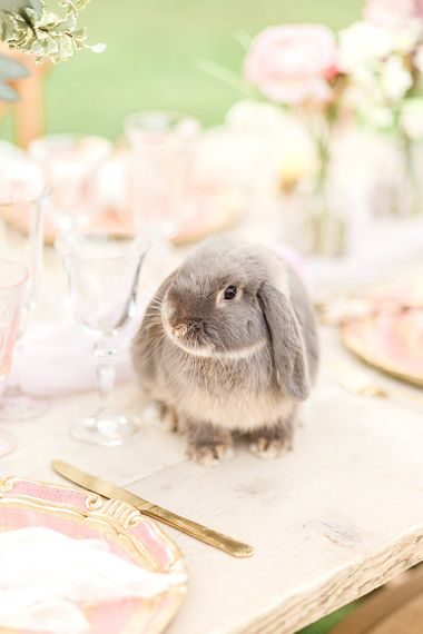 Easter Bunny At Wedding // Easter & Spring Wedding Inspiration With Seasonal Spring Flowers, Easter Eggs And Bunny Rabbits With Images From Gyan Gurung Photography