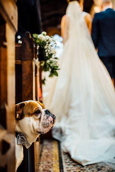 Jackson The Bulldog | Church Wedding Ceremony | Bride in Pronovias Tami Wedding Dress | Groom in Blue Moss Bros Suit | Michelle Wood Photography