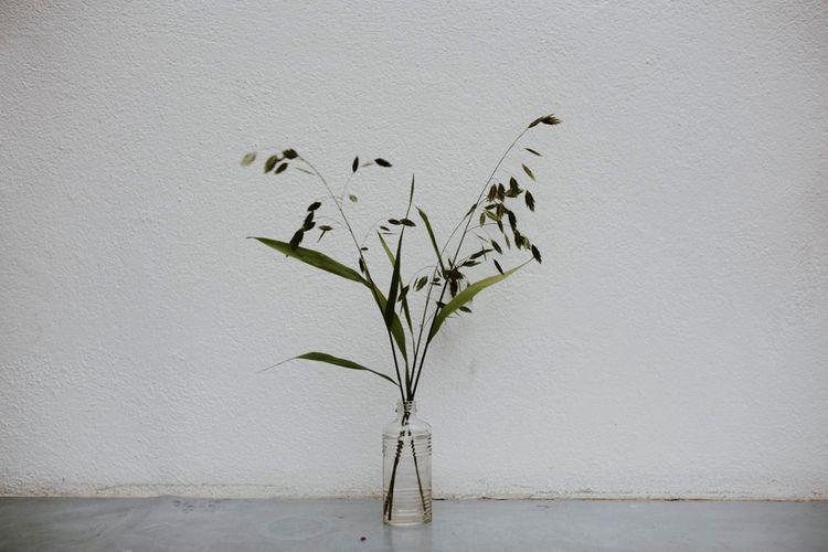 Flower Stems in Glass Bottles