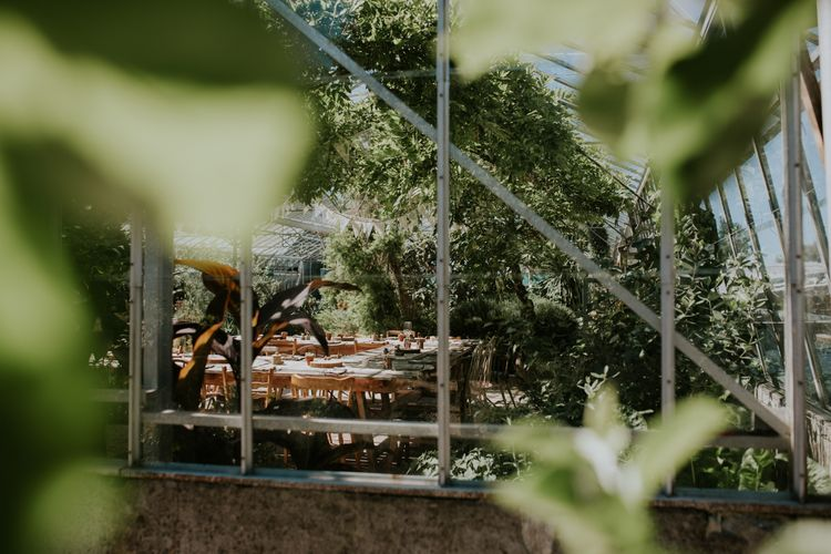 Rustic Wedding Reception In A Greenhouse