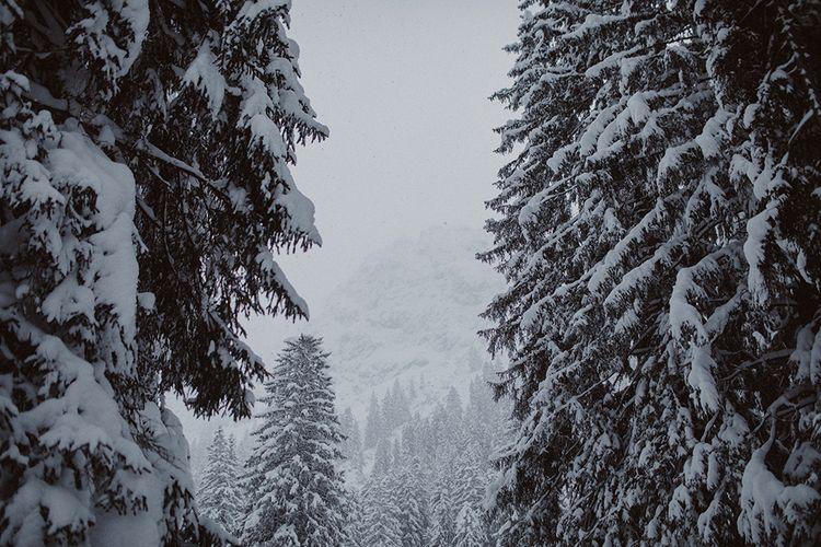 Snowy Winter Wedding In Bavaria