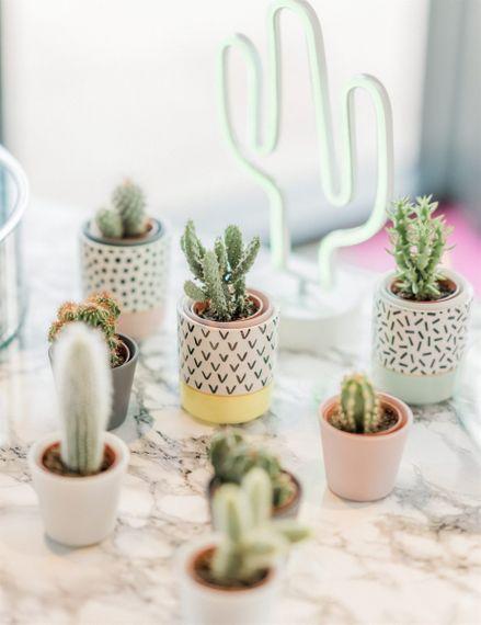 Cactus Wedding Decoration on Marble Wedding Cake Table