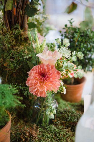 Pom Pom Dahlia Plant Pots as Centrepieces
