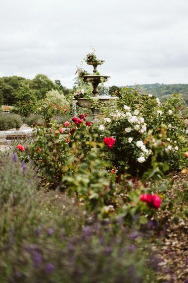 Gardens At Pynes House // Image By John Barwood Photography