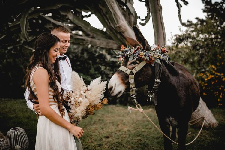 Portrait of bohemian bride and groom with a donkey