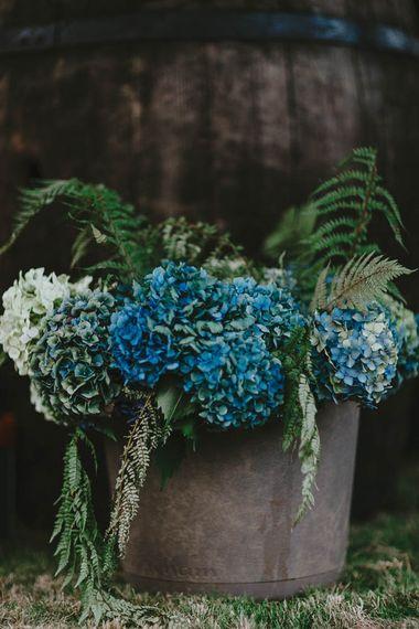 Blue Hydrangea Heads