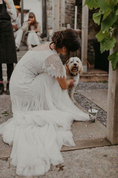 Pet dog at wedding