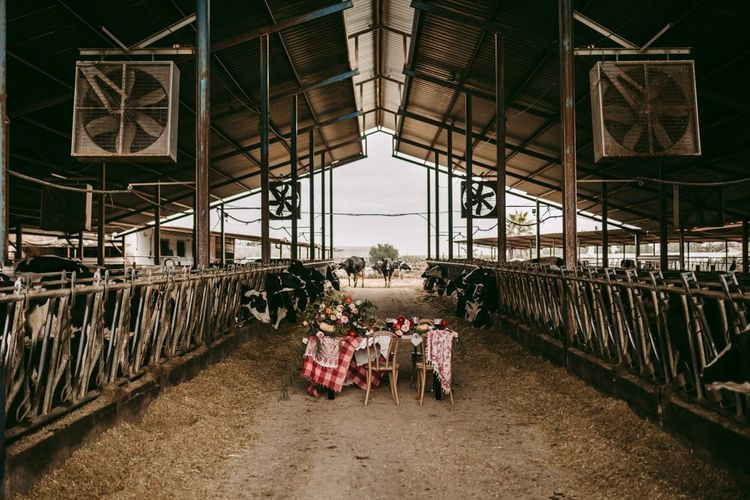 Tablescape in a cattle barn