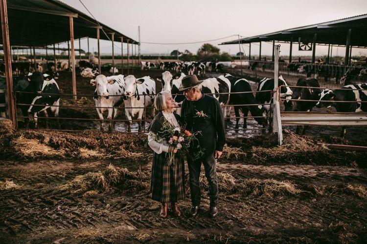 golden wedding anniversary portrait on a cattle farm