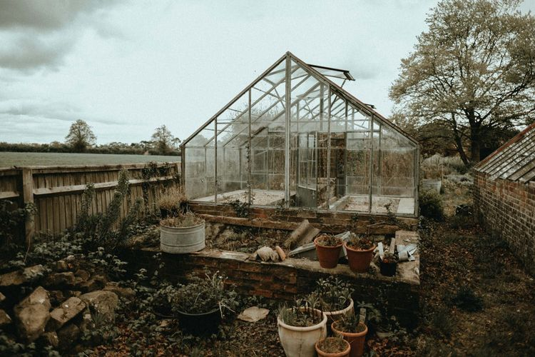 Greenhouse Photograph Backdrop