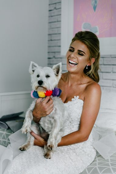 Bride and Pet West Highland White Terrier with Colourful Pom Pom Collar
