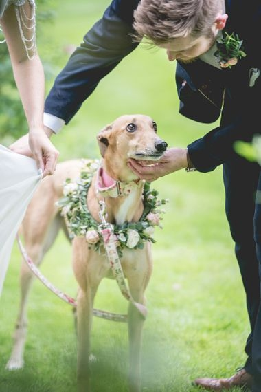 Pet dog with flower collar at wedding