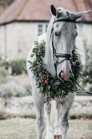The brides pet horse with flower collar