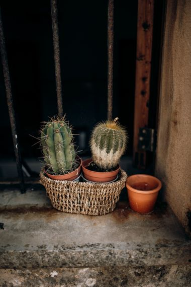 Cacti plants in wicker basket for Mallorca elopement