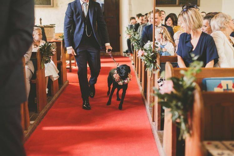 Lyra the dog walking down the aisle