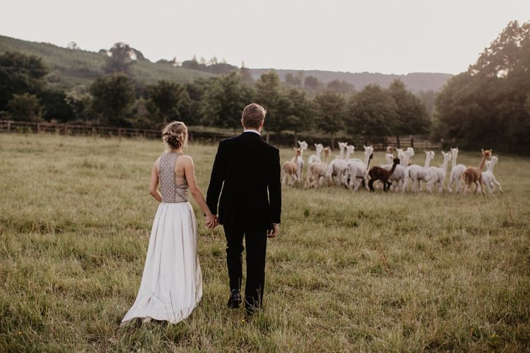 Bride and Groom With Alpacas in Field
