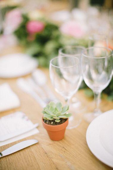 Succulent Plant Wedding Decor
