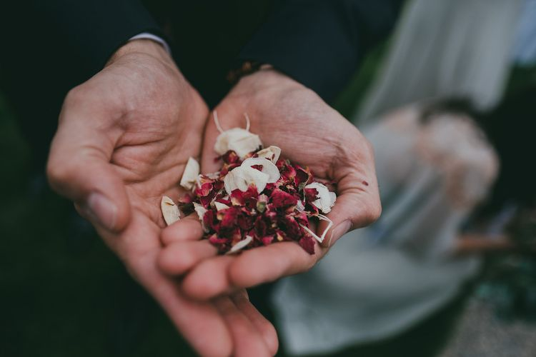 Dried Petals Confetti Image by Ross Talling Photography