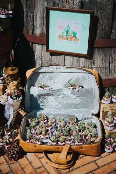 Individual Mini Cactus Wedding Favours in a Vintage Suitcase