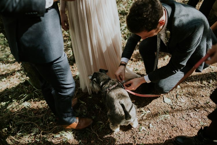 Dog Ring Bearer For Wedding // Image By Enchanted Brides Photography