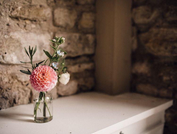 粉红玫瑰花瓣的小百合