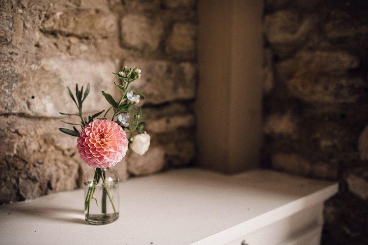 pink dahlia pompom flower in bottle