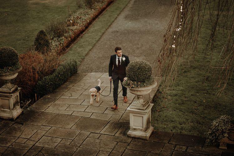 他在早上和狗狗的狗和汤米一起住在一起