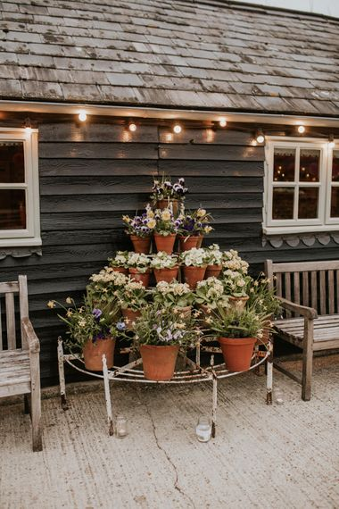 Flower pots filled with Spring blooms