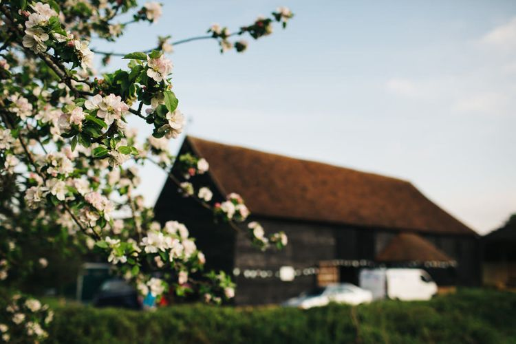 The Great Barn, Kent