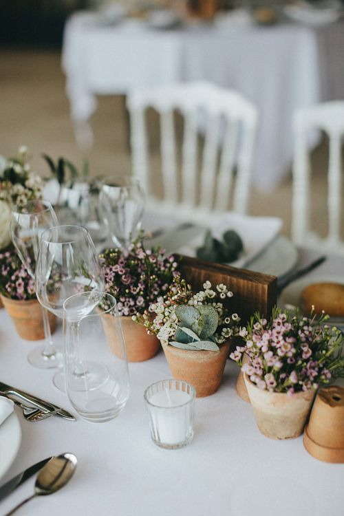 Potted Plants Table Centrepieces