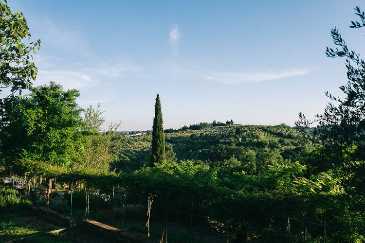 Treehouse Editorial in Tuscany