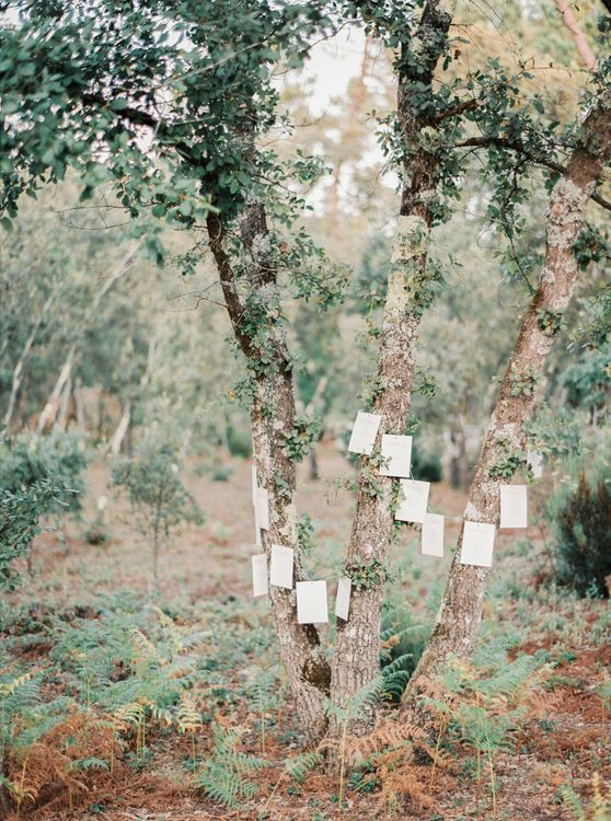 Strung Up Tree Table Plan