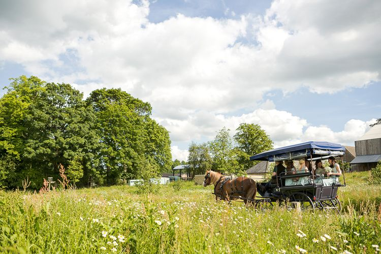 Horse & Carriage | Rustic Soho Farmhouse Ceremony with PapaKata Sperry Tent Greenery filled Reception | Marianne Taylor Photography | Will Warr Films