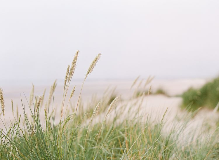 Coastal Wedding Inspiration From Rosy Apple Events