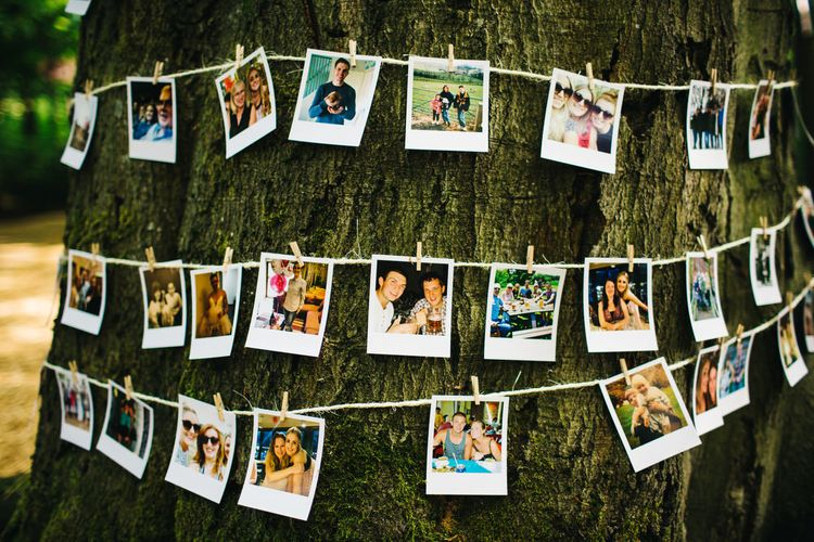 Polaroid Pictures strung up around a tree trunk