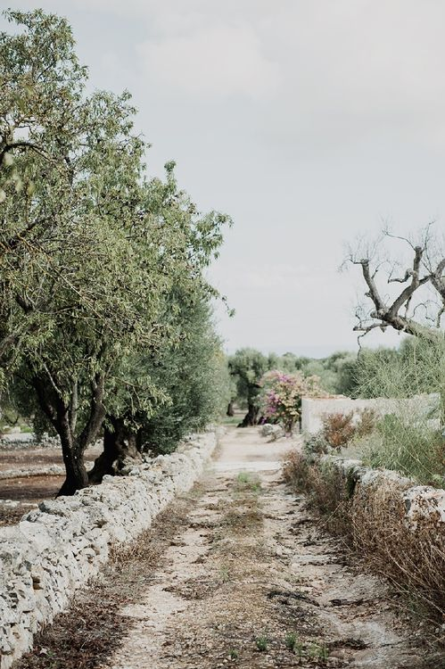Masseria Moroseta Puglia Wedding Venue
