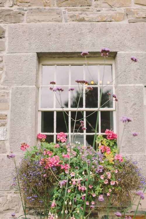 Floral Window Box