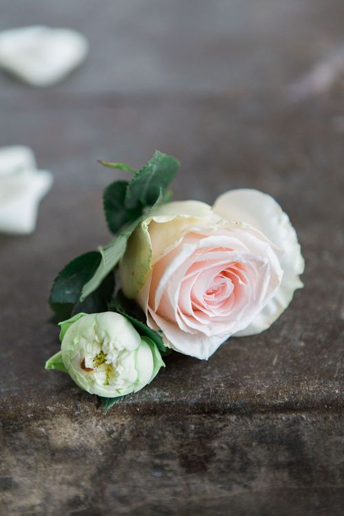 Delicate Pink Rose Buttonhole | Elegant Blush Pink & White Wedding at Aynhoe Park in Oxfordshire | Lucy Davenport Photography