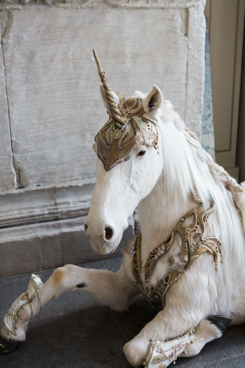 Unicorn | Elegant Blush Pink & White Wedding at Aynhoe Park in Oxfordshire | Lucy Davenport Photography