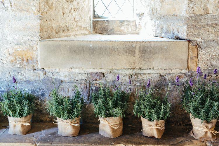 Pots Of Lavender For Wedding Decor