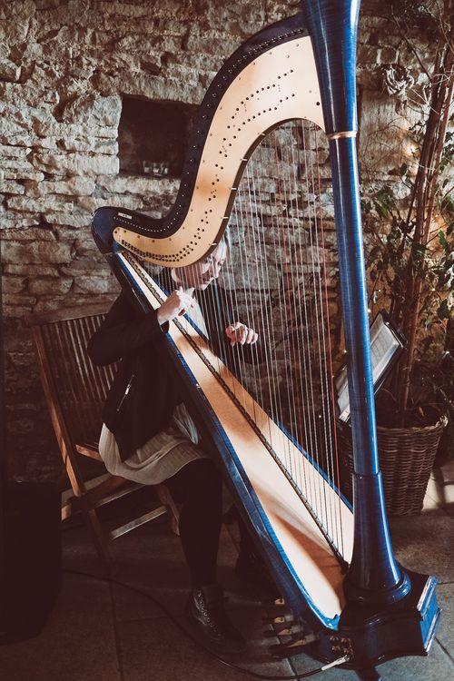 Harpist At Wedding