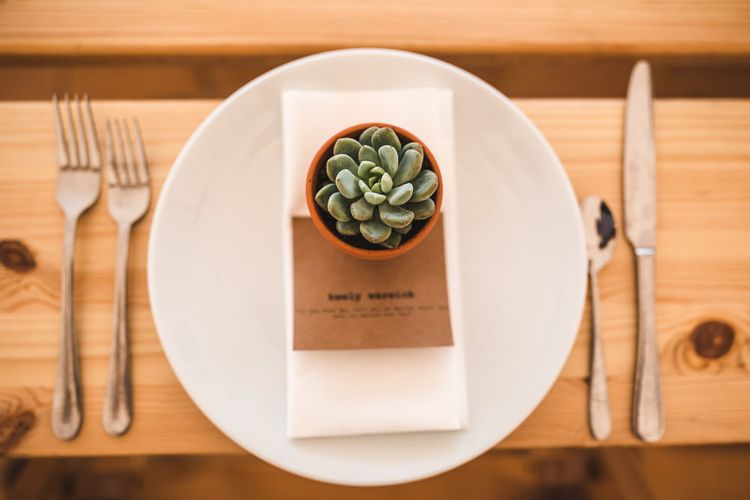 Succulent Wedding Favour | PapaKåta Sperry Tent at Chafford Park in Kent Countryside | Eve Dunlop Photography | Roost Film Co.