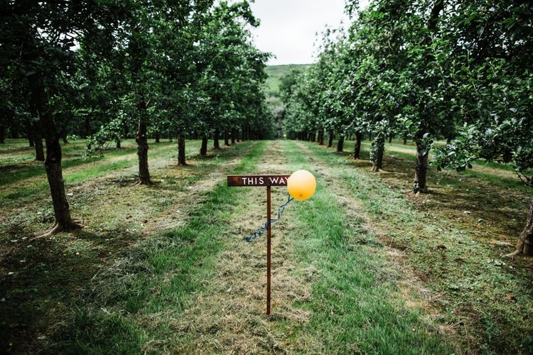 DIY Rustic Signage for wedding. Image by Through the Woods We Ran.