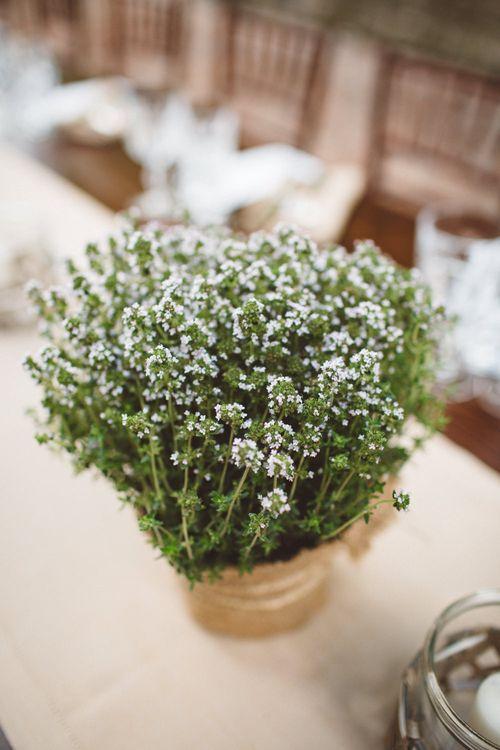 Plant Pot Wedding Decor | Outdoor Wedding at Borgo Bastia Creti in Italy | Paolo Ceritano Photography